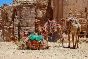 Jordan-travel-stories
