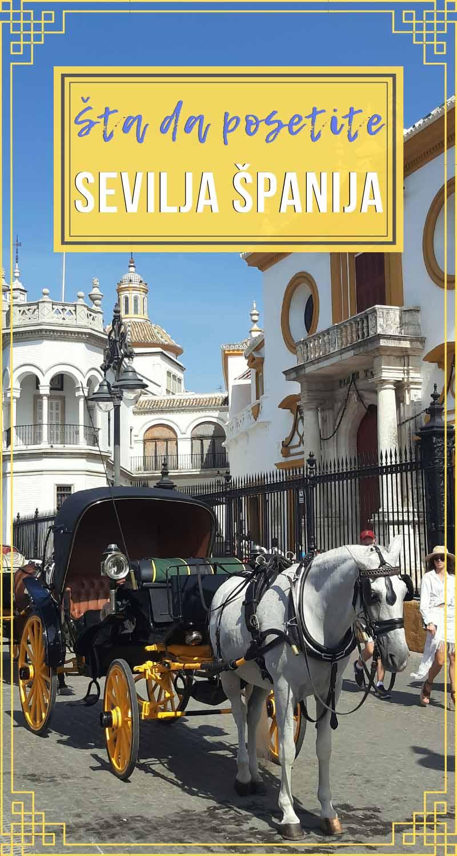 Putovanje-u-Sevilju-pin-Glimpses-of-the-World